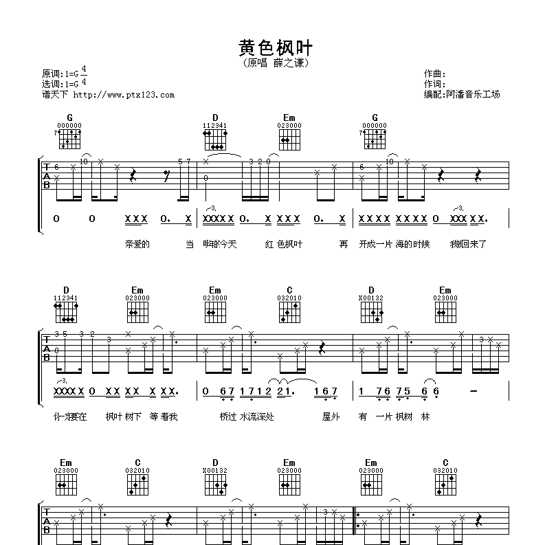 黄色枫叶吉他谱